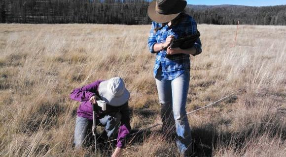 Maintaining and improving rangelands