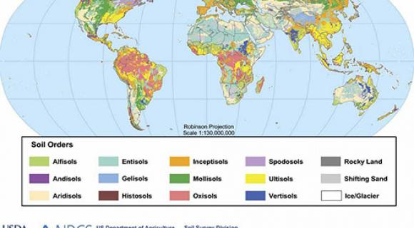 Map of the soil orders of the world