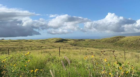 Hawaii rangelands
